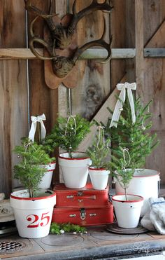 Create these stunning vintage enamel inspired Christmas tree pots from basic Terra Cotta Pots Rustic Cafe, Rustic Restaurant, Rustic Logo, Rustic Bench, Rustic Shelves, Rustic Farmhouse, Rustic Christmas, Christmas Diy, Christmas Decorations