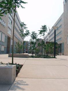 Ved Københavns Universitet har vi leveret betonfliserne i storformat. Aarhus, Sidewalk, Horse, Side Walkway, Walkway, Horses, Walkways, Pavement