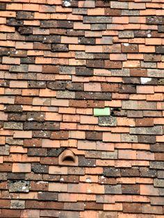 Dach in Dijon, Burgund