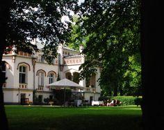 ogród pałacu