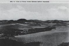 THE SOUTH BAY   PALOS VERDES ESTATES:  Palos Verdes Hills way back when.