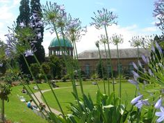 Marvelous Botanischer Garten Germany