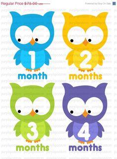month onsies stickers