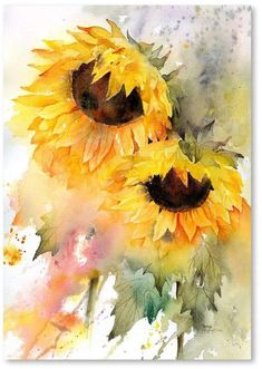Sunflower DuoBy Rachel McNaughton Sunflower DuoBy Rachel McNaughton The post Sunflower DuoBy Rachel McNaughton appeared first on Blumen ideen. Watercolor Sunflower, Sunflower Art, Watercolor Flowers, Sunflower Paintings, Paintings Of Sunflowers, Watercolor Ideas, Watercolor Paintings Tumblr, Sunflower Crafts, Watercolor Lotus