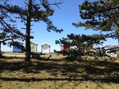 Skanör Beach, Sweden. Us Beaches, Beach House, Spaces, House Styles, Home Decor, Beach Homes, Decoration Home, Room Decor, Home Interior Design