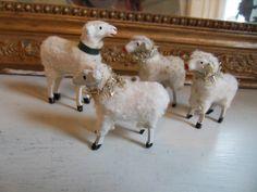Gamla Tyska får finns inne i min butik fagel-blabutik.se