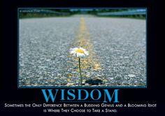 Wisdom from Despair, Inc.