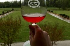 Wineries and breweries in Williamsburg, Virginia, include Williamsburg Winery and AleWerks Brewing Company. Williamsburg Winery, Williamsburg Virginia, Colonial Williamsburg, Barolo Wine, Virginia Wineries, Wine Glass Rack, Wine Baskets, Wedding Venues Texas, California Wine