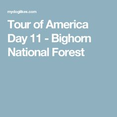 Tour of America Day 11 - Bighorn National Forest