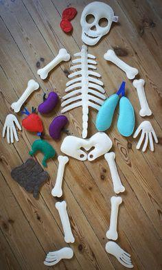 Felt skeleton for studying human body with kids Felt Crafts, Crafts To Make, Fabric Crafts, Diy Crafts, Human Body Activities, Activities For Kids, Diy For Kids, Crafts For Kids, Baby Learning Toys
