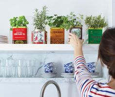 Use Vintage tins to Grow herbs. Make your indoor herb garden a design feature in your kitchen with a collection of colourful vintage tea tins on display via House & Home. Diy Herb Garden, Garden Gifts, Home And Garden, Box Garden, Kitchen Herbs, Kitchen Decor, Kitchen Ideas, Kitchen Interior, Kitchen Display