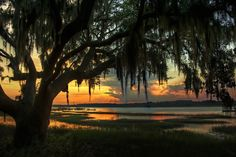 Sunset over the Marshes, Charleston, South Carolina