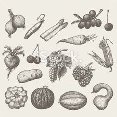 handmade work - set fruits and vegetables Royalty Free Stock Vector Art Illustration