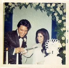 RARE: Elvis and Priscilla Presley cutting their wedding cake at second reception later in month at Graceland. Priscilla Presley Wedding, Elvis And Priscilla, Elvis Presley Family, Elvis Presley Photos, Before Wedding, Wedding Day, Wedding Reception, Wedding Venues, Elvis Wedding