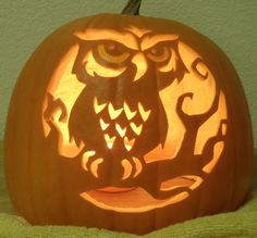 Google Image Result for http://fc04.deviantart.net/fs71/f/2010/304/3/e/spooky_owl_light_by_joh_wee-d31xi86.png