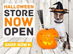 Pet Halloween Store Now Open. Shop #Petcostumes at unbelievable prices.