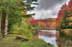 The Moose River on Scusa Road near Old Forge, New York. #ADK #Autumn