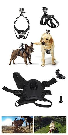Dog Fetch Harness Chest Strap Belt Mount for Gopro . Take your pet and gopro and go travel the world. Get it in our Black Friday deal right now! Last call to our Lightning Deals you can enjoy! Exciting Deals of the Day, and savings on your wallet