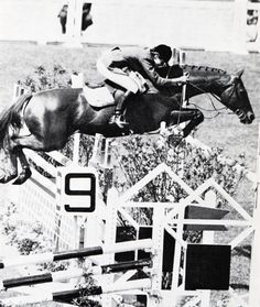Untouchable with Kathy Kusner at 1968 Mexico City Olympics. While not bred, he was an OTTB by Bolero, making him a half-brother to Terlingua's grand-dam, but flunked out of racing & was sold. Now he rests in the Showjumping Hall of Fame. He was on 12 winning Nations' Cup teams & won everything else, including Hickstead, Aachen's Puissance, & Dublin's Grand Prix (twice!).