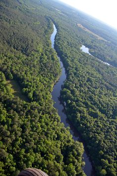 The Pea River in Elba, Alabama.