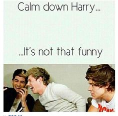 Haha seriously, love.... There is no need to overreact... Basically how my friends and family are when I see a One Direction joke and start bursting out laughing.