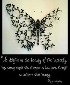 We delight in the beauty of the butterfly, bur rarely about the changes it has gone through to achieve that beauty.
