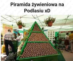 Wtf Funny, Funny Memes, Polish Memes, Me Too Meme, Cool Rooms, Best Memes, Some Fun, Funny Photos, I Am Awesome