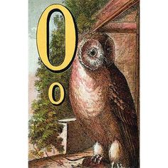 Buyenlarge 'O for the Owl that sees in the Dark' by Edmund Evans Graphic Art