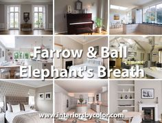 """If you want to go for a gray wall in your living area that is not too dark then, Farrow & Ball suggest using colours with a yellow base which will make for a warmer grey. Try using Elephant's Breath No.229 has the most contemporary feel, with a purple undertone. """"Elephant's Breath with its hint…"""