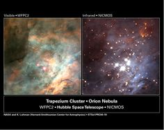 Galassie HII: nuovo metodo per la costante di Hubble Neutron Star, Infrared Photography, Star Formation, Orion Nebula, Hubble Space Telescope, Light Images, Astrophysics, Dark Matter, Planets