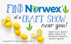 Find Norwex at a Spr