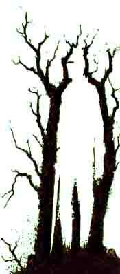 Knight in The Woods Illusion - http://www.moillusions.com/knight-in-the-woods-illusion/