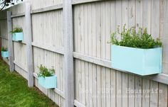 planter boxes on the fence!