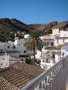 Bédar es un municipio español de la provincia de Almería, Andalucía. En el año 2014 contaba con 986 habitantes. Su extensión superficial es de 46 km² y tiene una densidad de 21,43 hab/km². Sus coordenadas geográficas son 37º 11' N, 1º 58' O. Se encuentra situada a una altitud de 404 metros y a 88 kilómetros de la capital de provincia, Almería.