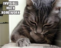 from Invisible cats.com - Invisible math homework.
