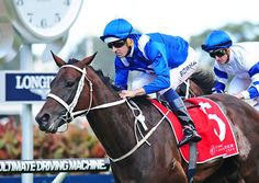 The mighty mare Winx put a seal on her greatness with a superb performance to outclass a top quality field in Saturday's $1 million Group 1 China Horse Club George Ryder Stakes (1500m) at Rosehill Gardens.