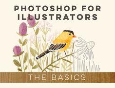 Photoshop for Illustrators: The Basics ATLY $60