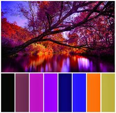 Autumn 2013 Jewellery Collection Jewelry Collection, Autumn, Jewellery, Photo And Video, Art, Art Background, Fall, Jewels, Schmuck