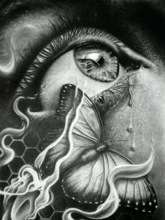 ~Lookin through the eye of the Butterfly~
