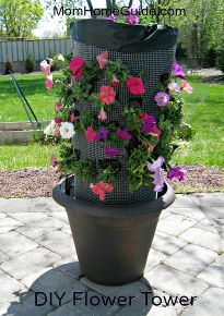 how to make a diy flower tower for your backyard or porch, diy, flowers, gardening, how to, Petunia flower tower it will look even better when the flowers fill in I used an inexpensive plastic pot for this project