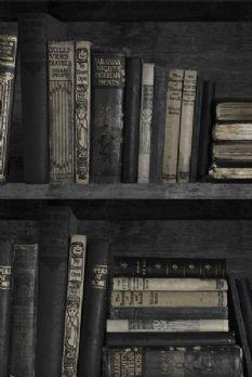 Dark Bookcase Wallpaper By Young Battaglia 25m Length Bookshelf Book
