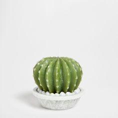 Ronde cactuskaars