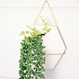Modern Hanging Planter Vase, Geometric Wall Decor Container - This is an affiliate link - Great For Succulent Plants, Air Plant, Faux Plants,White Ceramic/Brass Wall Hanging Designs, Hanging Wall Planters, Vertical Wall Planters, Decorative Planters, Gold Planter, Blue Garden, Planting Succulents, Succulent Plants, Geometric Wall