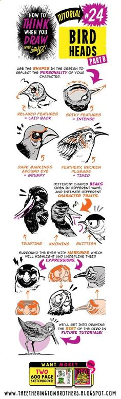 The Etherington Brothers: How to THINK when you draw BIRD HEADS