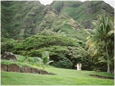 What a stunning day it was for a wedding! Witnessing Jessica and James' Tropical Elopement at Kualoa Ranch was an absolute honor. Jessica James, Kualoa Ranch, Hawaii Wedding, Love Birds, Vows, Wedding Venues, Alice, Wedding Inspiration, Tropical