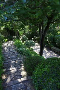 Le jardin de la Louve à Bonnieux : de la verdure Haute couture