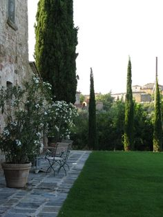 tuscany garden with Cupressus 'Stricta'