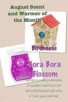 August 2013 Warmer and Scent of the Month.