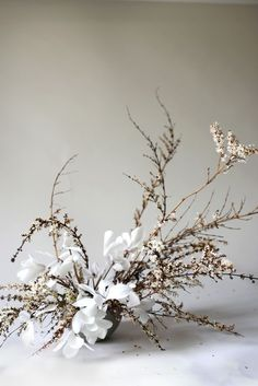 White Cyclamen Flowers with rustic vines. The ultimate minimalist floral arrangement for winter and fall. Dried Flower Arrangements, Wedding Arrangements, Wedding Table Centerpieces, Dried Flowers, Flower Centrepieces, Bohemian Flowers, Colorful Flowers, Bohemian Bride, Floral Flowers