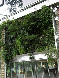 Cartier Foundation, Paris | Vertical Garden Patrick Blanc